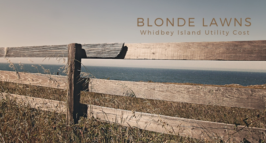 Blonde Lawns, Yard, Grass, homes, whidbey island, Oak Harbor