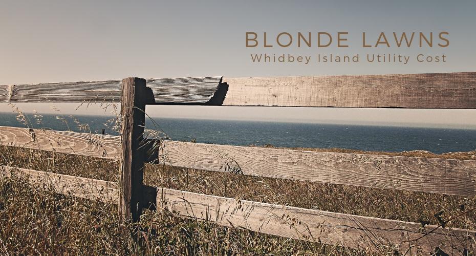 Blonde Lawns, Yard, Grass, homes, whidbey island, Oak Harbor
